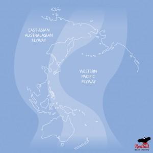flyway-map