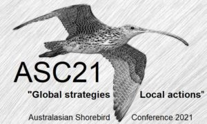 Australasian Shorebird Conference poster 2021